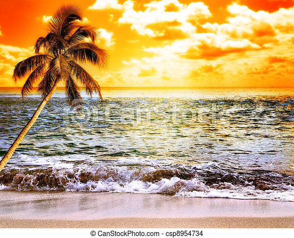 Ocean At Sunset - csp8954734