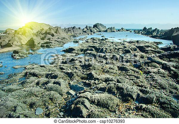 Ocean coast at sunrise - csp10276393