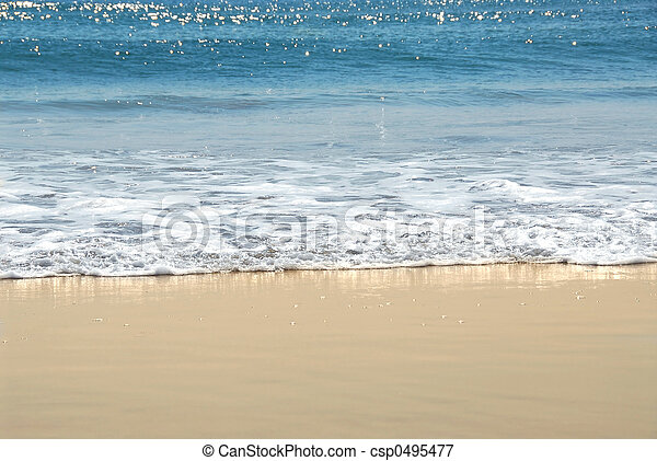 Ocean shore - csp0495477
