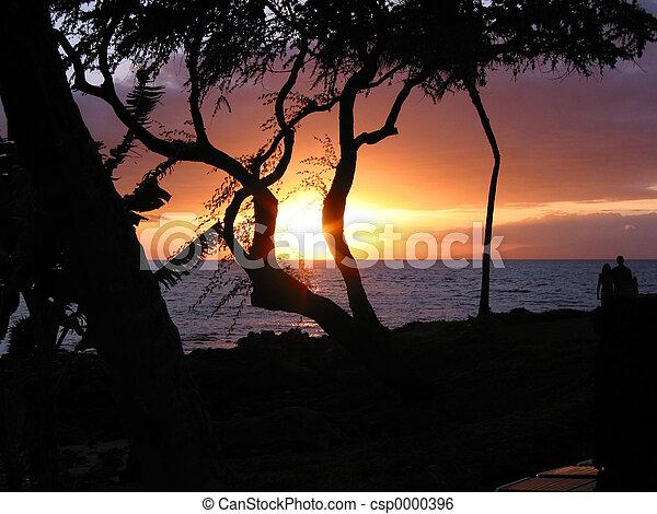 Ocean Sunset - csp0000396