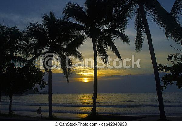 ocean sunset - csp42040933