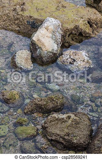 ocean water creating pools of water between tides - csp28569241