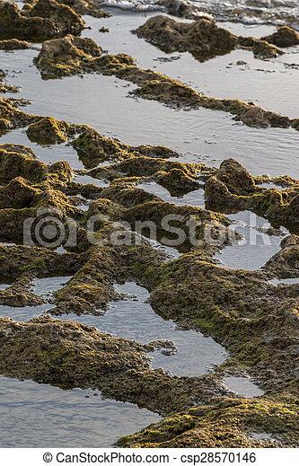 ocean water creating pools of water between tides - csp28570146