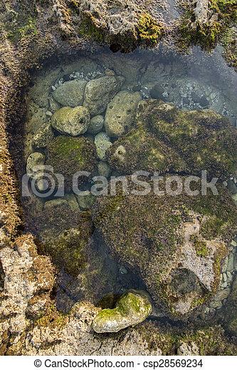 ocean water creating pools of water between tides - csp28569234