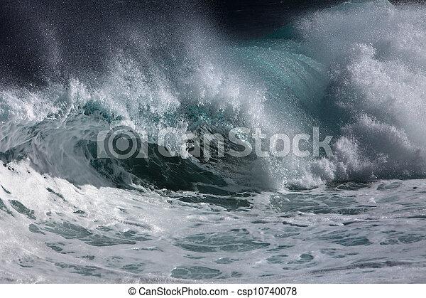 Ocean wave  - csp10740078