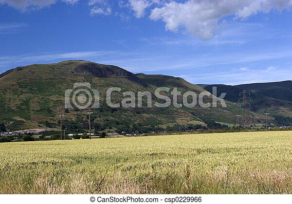 Ochil Hills 2 - csp0229966