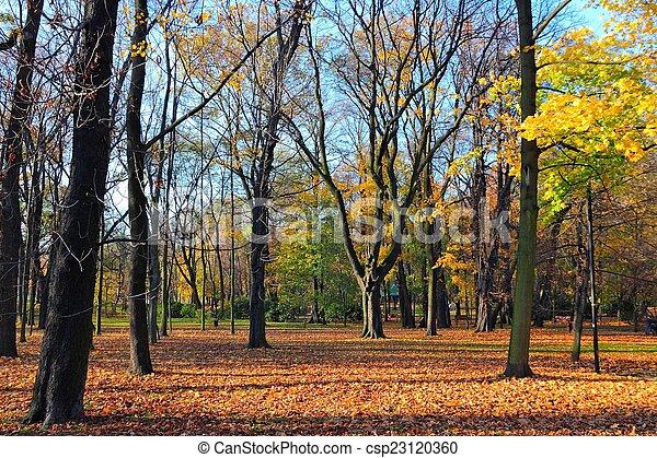 October in Europe - csp23120360