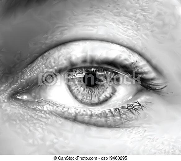oeil, vecteur, macro., gris, femme - csp19460295