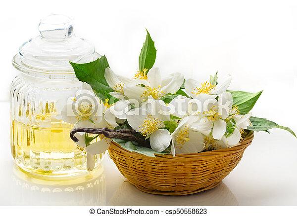 oel, bohnen, vanille, blumen, jasmin - csp50558623