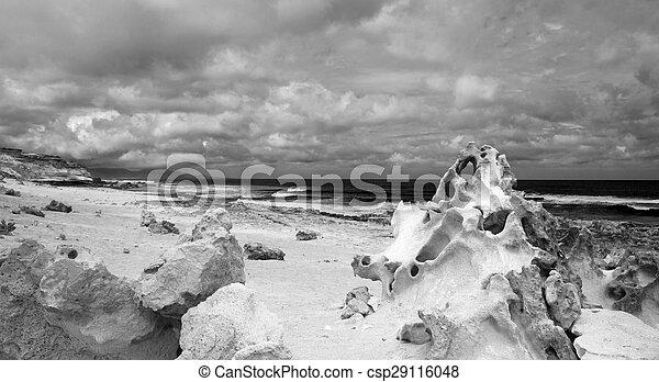 oeste, fuerteventura, costa, canário, jandia, ilhas - csp29116048