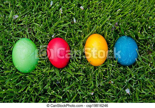 oeufs, paques, coloré - csp19816246