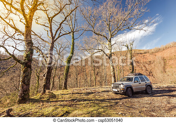 Off road car parked in wild forest - csp53051040