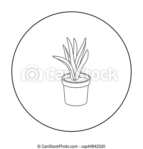 Office Plant In Th Flowerpot Icon In Outline Style Isolated On White Background. Office Furniture  sc 1 st  Can Stock Photo & Office plant in th flowerpot icon in outline style isolated on white ...