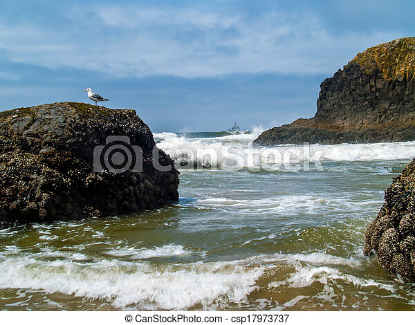 """Offshore lighthouse on the Oregon Coast nicknamed """"Terrible Tilly"""" - csp17973737"""
