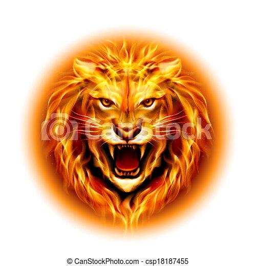 ogień, lion., głowa - csp18187455