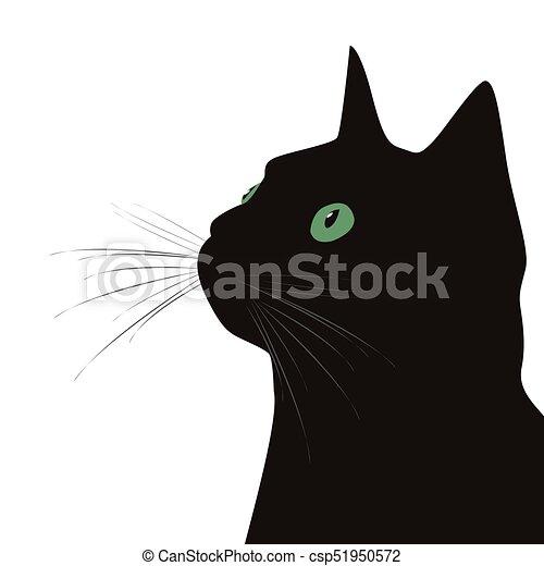 Gato negro con ojos verdes en el fondo blanco - csp51950572