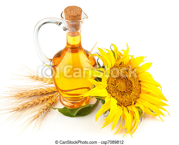 olaj, virág, napraforgó - csp7089812