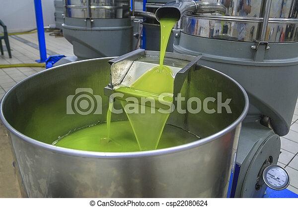 olajbogyó, termelés, olaj - csp22080624