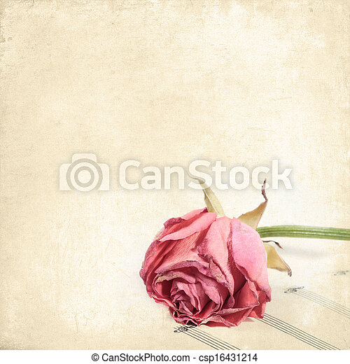 Old background with rose on a stave. Vintage floral background for any of your design - csp16431214