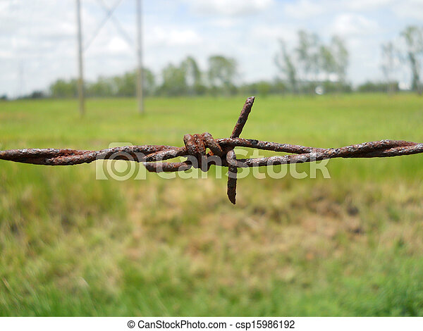 Old barbed wire with shallow depth of field (dof). Macro shooting - csp15986192