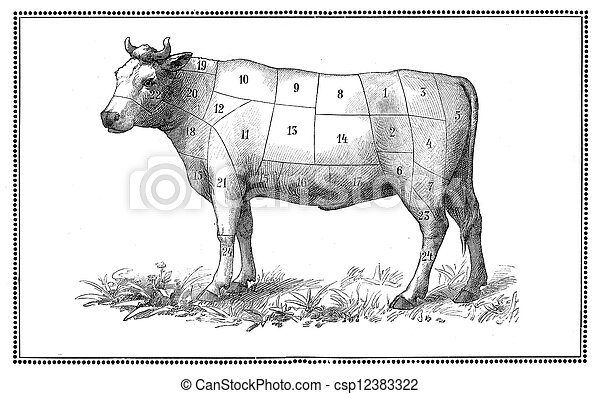 Old Beef chart - csp12383322