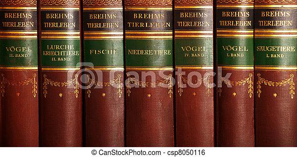 Old books - csp8050116