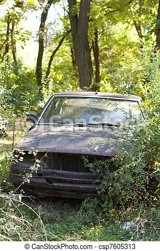 old broken car between green bushes and forests
