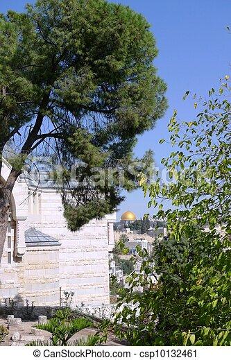 Old City of Jerusalem - csp10132461