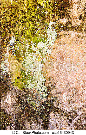 Old concrete wall - csp16480943