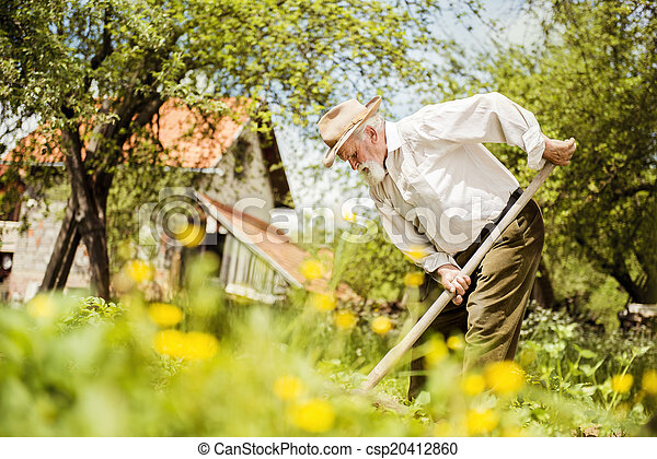 Old farmer on the meadow - csp20412860