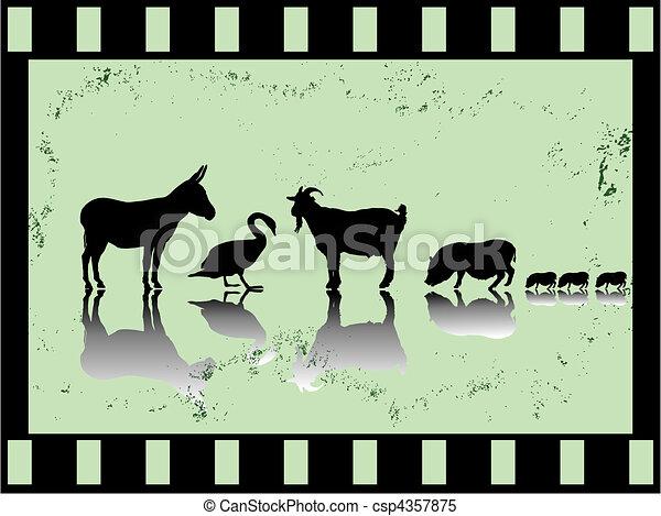 old film strip with farm animals - csp4357875