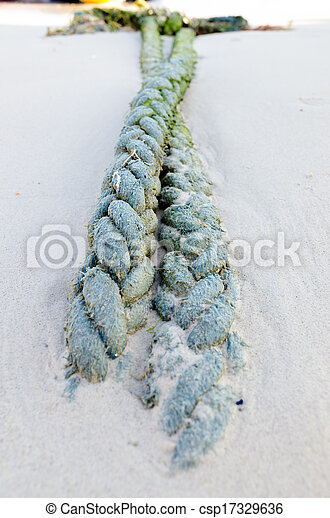Old fishing boat rope - csp17329636