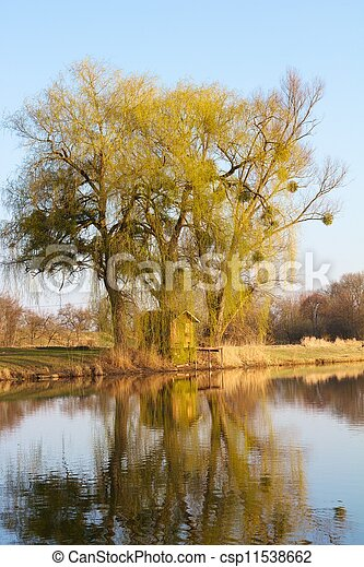 Old fishing hut with a wooden dock in the famous Rheinauen nature reserve at the River Rhine, Karlsruhe, Germany - csp11538662