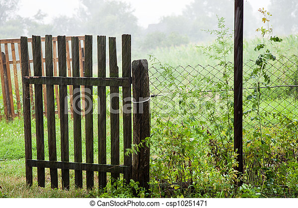 Old gate in the rain - csp10251471