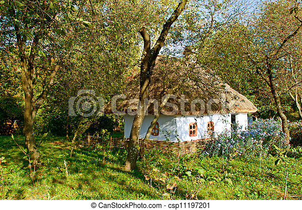 old house with a thatched roof - csp11197201