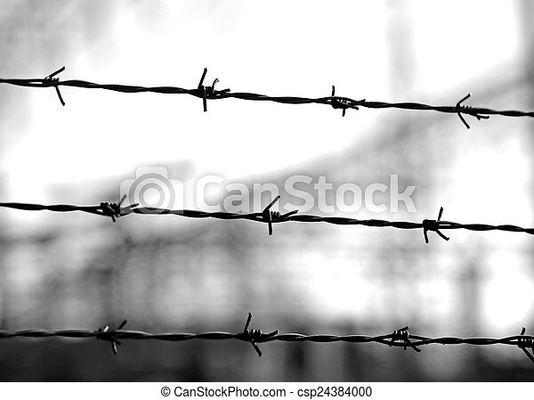 old lines of barbed wire to demarcate the border - csp24384000