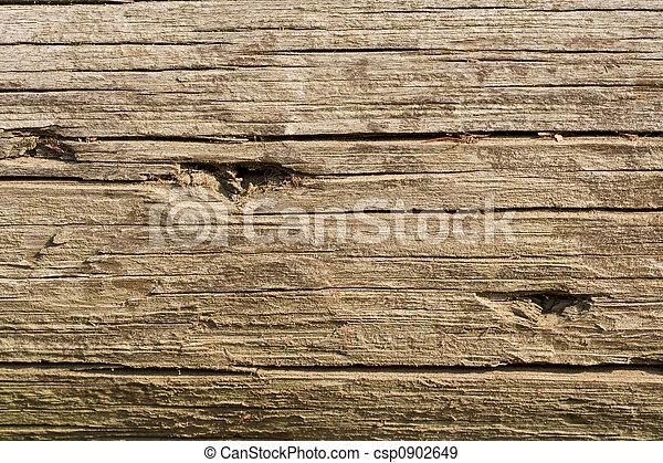 Old log background - csp0902649