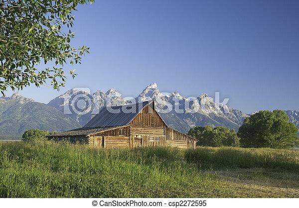 Old Mormon Barn against the tetons - csp2272595