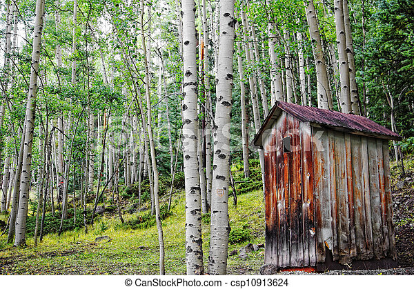 Old Outhouse in Aspen Forest - csp10913624