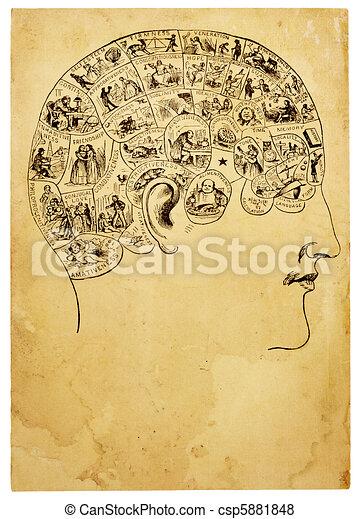 Old Phrenology Illustration - csp5881848