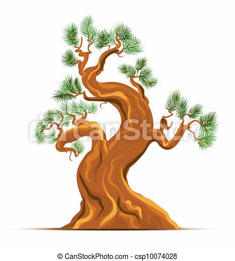 Old Pine Tree Vector Art - csp10074028