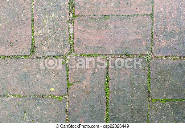Old Red Brick Floor Texture