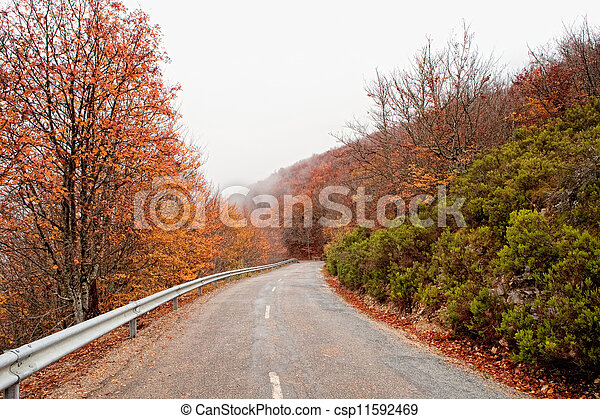 Old road in a forest - csp11592469