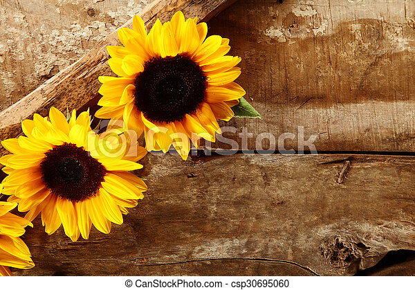 Old Rustic Wooden Background With Sunflowers