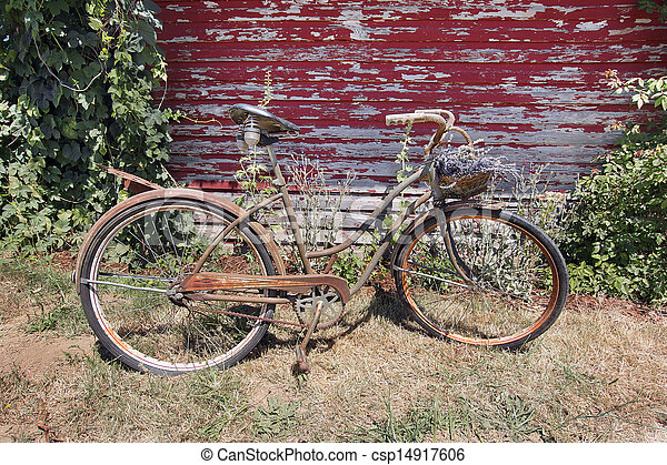 Old Rusty Bicycle with Basket of Lavender Flowers - csp14917606