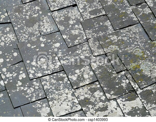 Old Slate Roof Tiles - csp1403993