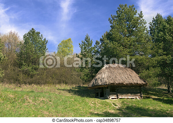 Old Small Wooden Hut In The Forest   Csp34898757