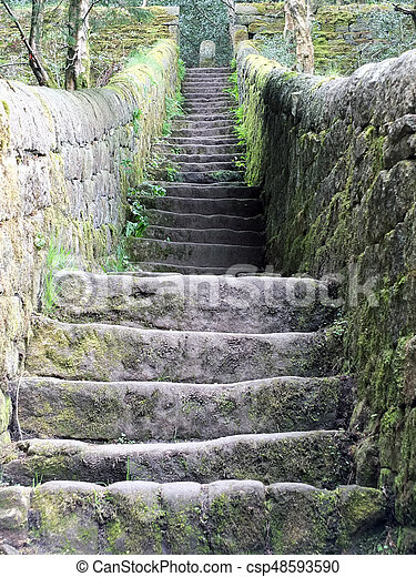 old steep stone steps with walls moss and surrounding vegetation - csp48593590