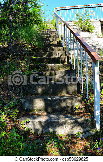 Old stone stair and surrounding vegetation - csp53629825