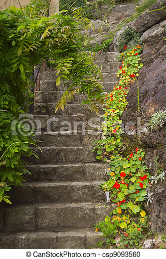 Old stone stairs in the garden - csp9093560